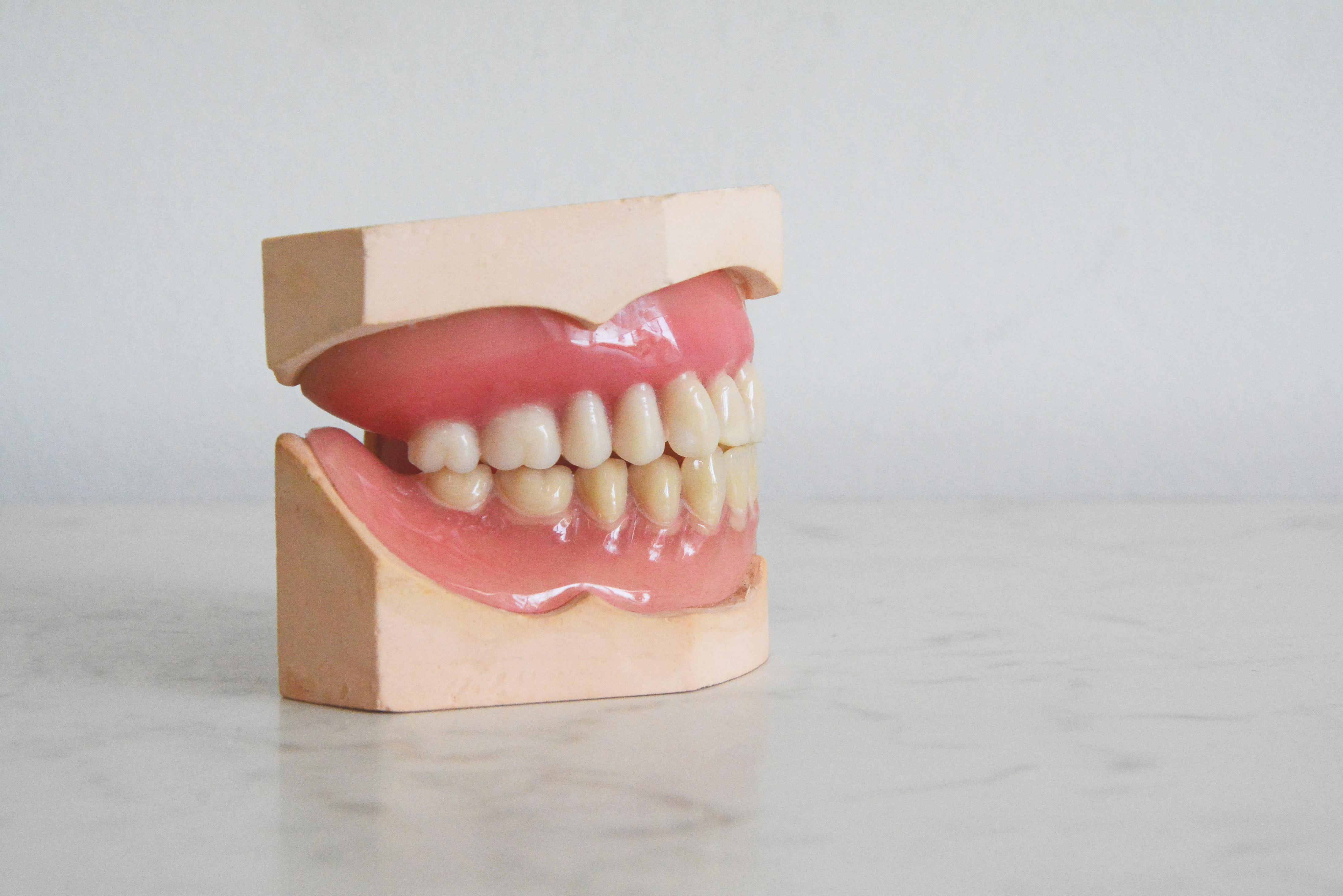 set-of-practice-teeth-for-dental-hygienist